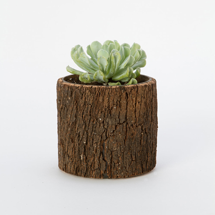 smith and hawken self watering planter instructions