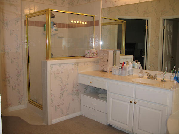 shower and vanity before