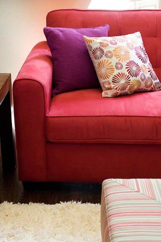 Austin Vibrant Living Room Details
