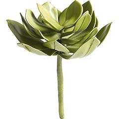Artificial Succulent on Stem, $8.