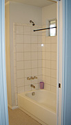 tub_shower_before