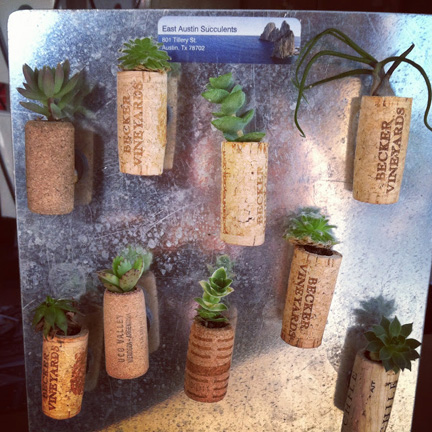 Wine corks upcycled into succulent planters by East Austin Succulents, available at Parts & Labour.
