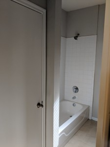 Austin Bathroom Remodel Tub Surround